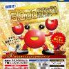 【ボートレース三国】電話投票キャンペーン「目指せ!5,000万円キャッシュバック!!」